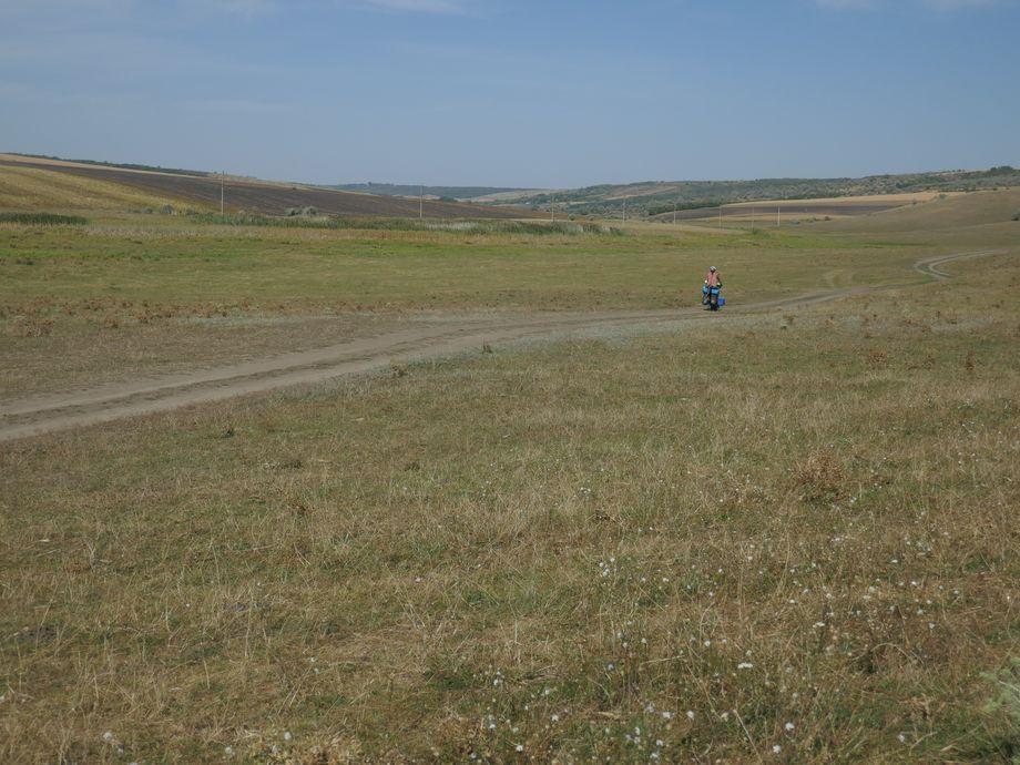 steppe moldova
